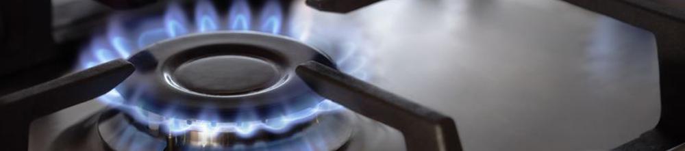 Cocción y Calor